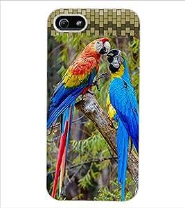 ColourCraft Colourful Parrots Design Back Case Cover for APPLE IPHONE 5