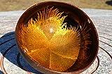 Batriozo Einzigartige Kokosnussschale – Gold – Hochwertige Dekoschale – 100% Handgemacht und Umweltfreundlich – Vielseitig Einsetzbar – Coconut Bowl - 3