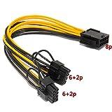 velidypci-e 8Pin auf 2x 6+ 2P (6-/8Pin) Power Splitter Kabel PCI-Express 20cm