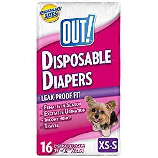 OUT! Disposable Dog Diapers 51ERpkx1utL