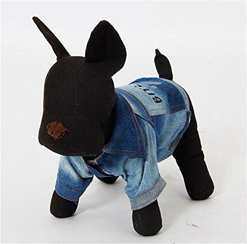Hund Kleidung, Pawz Road Hund Jeans-Stoff Jacke Pet Kostüm Klettverschluss Klebeband einfach auf/aus mit Hundemotiv Bite Me 5Größen Hund (Kostüme Einfach Klebeband)