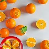 Caja de 15 kg de Naranjas de zumo para el verano. Conservadas en cámara)