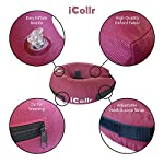 iCollr – The Inflatable Pet Collar for Cats and Dogs in Post Surgery Recovery - MEDIUM + 10