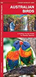 Australian Birds: A Folding Pocket Guide to Familiar Species (Pocket Naturalist Guide Series)