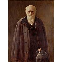 POSTERLOUNGE Póster 30 x 40 cm: Portrait of Charles Darwin de John Collier/Bridgeman Images - Impresión Artística de Alta Calidad, Nuevo Póster Artístico