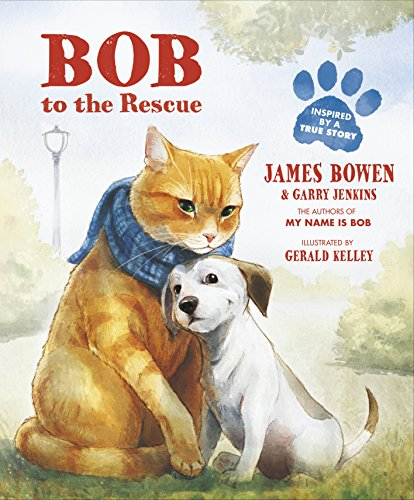 Bob to the Rescue: An Illustrated Picture Book (Fox Habe)