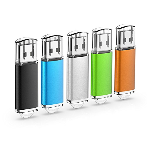 RAOYI 5 STÜCKE 16 GB USB-Sticks Thumb Drives Memory Stick USB 2.0 JumpDrive (5 Farben: Schwarz Blau Grün Orange Silber) (16 Drive G Jump)