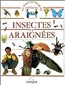 Insectes et araignées par Galbert