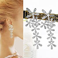 Gleader a largo lindo Crystal Rhinestone de la flor de la borla cuelga el banquete de boda de los pendientes nuevos - Plata