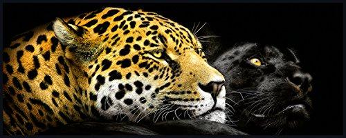 Eurographics LA-PJK1001 Ebony und Ivory 50x125 Light Art, Acryl, Bunt, 125,00 x 50,00 x 5,00 cm (Katze Ebony)