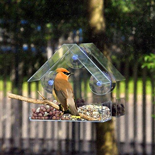Hunpta Vogelhaus, transparent, mit Saugnäpfen zum Aufhängen