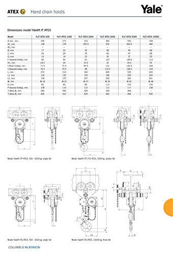 Yale AMZ1022402 Integral-Paranco A cremagliera, ITG, ATEX m, tipo A, per autunno, Standard, con catenina, Contenitore per alimenti, 500 kg, 5 m