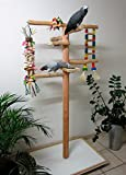Kletterbaum für Vögel, Freisitz für Papageien, Papageienspielzeug, Rotbuchenholz,165 cm