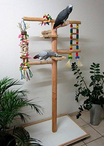 Markenlos Kletterbaum für Vögel, Freisitz für Papageien, Papageienspielzeug, Rotbuchenholz,165 cm