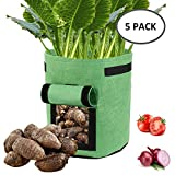 5er Pflanzsack aus Vliesstoff 18L Pflanztaschen mit Klappe und Griffen für Kartoffel Tomaten Auberginen Kartoffelsack Pflanzbeutel Garten Übertopf (Grün)
