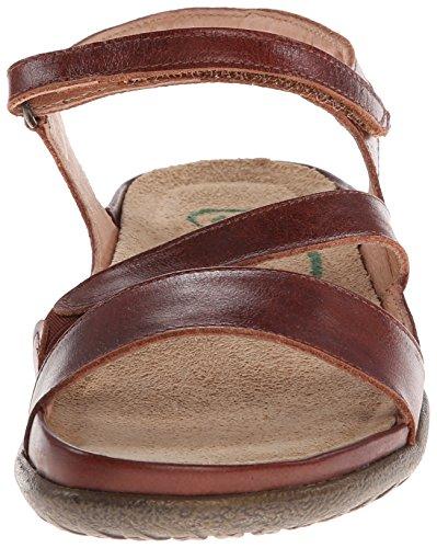 Marrom Naot Sapatos Etera Sandálias Senhoras Verão w6wUxqXfYn