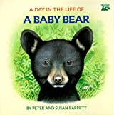 A Day in the Life of a Baby Bear: The Cub's First Swim