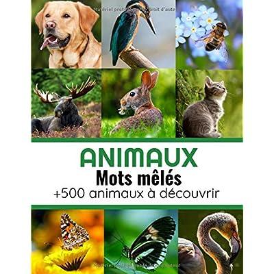 Animaux Mots Mêlés: Mots cachés Adultes sur les Animaux (avec Solutions) | Découvrez plus de 500 espèces animales et 40 grilles de mots cachés | Gros caractères, 51 pages