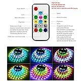 1M 2M 3M 4M 5M 30 Pixel/M programmierbare Steuerung LED-Streifen-Licht-externe 2811 IC 5050 RGB LED-Bandlampe DC12V (1 M, 14 Tasten Fernbedienung, 2A Adapter)