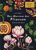 Das Museum der Pflanzen. Postkartenbuch - Katie Scott
