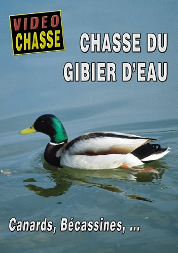 chasse-du-gibier-deau-canard-becassines-video-chasse-chasse-du-petit-gibier