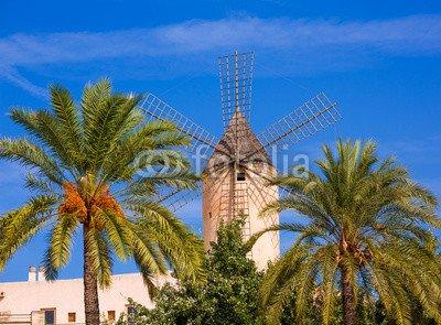 "Leinwand-Bild 120 x 90 cm: \""Palma de Majorca windmills wind mill in Mallorca\"", Bild auf Leinwand"