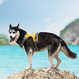 ThinkPet AdventureMore Neopren gepolsterte Hundegeschirr, Warnharnisch Sicherheitsweste Choke frei Geschirr