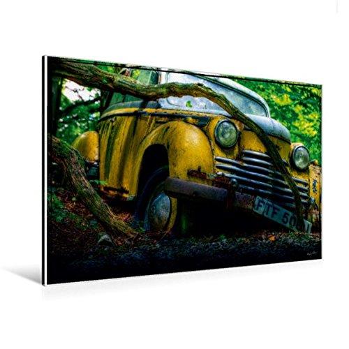til-Leinwand 120 cm x 80 cm quer, Verfangen | Wandbild, Bild auf Keilrahmen, Fertigbild auf echter Leinwand, Leinwanddruck Mobilitaet Mobilitaet ()