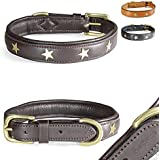[Gesponsert]Fashion-Line von Pear Tannery: Hundehalsband aus weichem Vollrindleder, versehen mit einer Stern-Verzierung mittig, S 36-46cm, schokoladenbraun