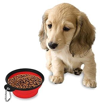 Westeng Gamelle pour chien de voyage pliable en silicone avec mousqueton