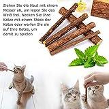 AILUKI 26 Stück Katzenspielzeug Set mit Katzentunnel Katzen Spielzeug Variety Pack für Kitty - 5