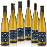Blanco Nieva Sauvignon Blanc 2016 - Vino Blanco D.O. Rueda, (6 botellas x 0,75l)