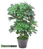 Decovego Schefflera Aralie Kunstpflanze Kunstbaum Künstliche Pflanze Schefflera Arboricola Strahlenaralie 60cm