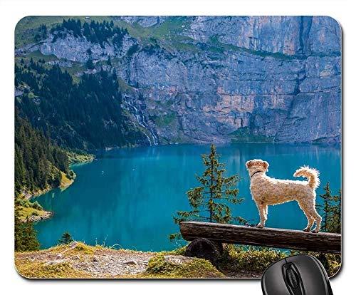 Gaming-Mauspads, Mauspad, Ansicht Bergsee Bank Dog
