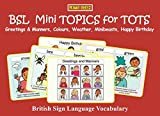 BSL Mini TOPICS for TOTS: Greetings & Manners, Colours, Weather, Minibeasts, Happy Birthday: British Sign Language  Vocabulary (Let's Sign Early Years)