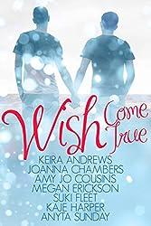 Wish Come True (English Edition)