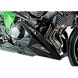 Kawasaki Z80013–15Quilla para motocicleta en fibra de carbono, color plateado