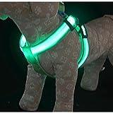 Eastlion Haustier Zu Fuß LED Licht Brustgeschirre für große Hundegeschirre Grün XL