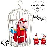 alles-meine GmbH 2 tlg. Set _ Vogelkäfig + Nach sprechender - Papagei / Vogel / Ara - Incl. NAM..