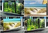 Seitenmarkise mit Fotodruck WALD, Sichtschutz, Windschutz