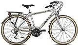 Legnano Ciclo 300 Sanremo, City Bike Uomo, Grigio/Nero, 56