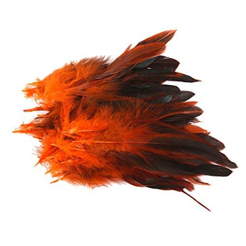 ahn Federn Hahnenfedern Hahn Cock Feather Natur Hahnenfedern Fasching Karneval Halloween Kostüm - Orange (Diy Kostüme Für Mich)