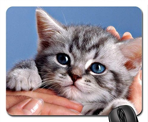 mano-color-azul-de-ojos-gatito-gris-cat-cute-animal-whiskas-mouse-pad-mousepad-cats-mouse-pad