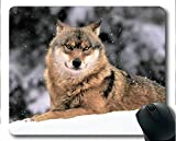 Yanteng Mauspad, Wildlife Raubtier Winter Tier Wolf Gummi Gaming Mouse Pad (Multicolor)