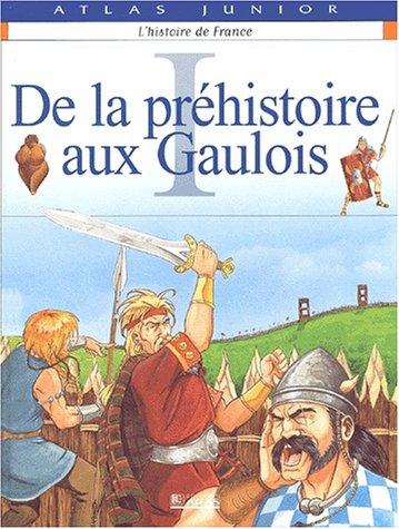 L'Histoire de France, tome 1 : De la préhistoire aux gaulois