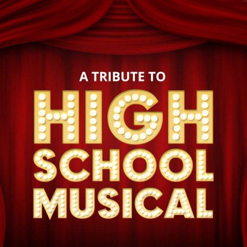 hool Musical (High School Musical Ryan)