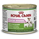 Royal Canin Dog Food Starter Mousse 12 x 195 g