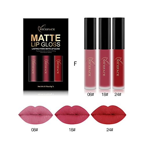 Rechoo Beauty Sexy 3PCS / set antiadherente Cup Waterproof Lipgloss Mate Liquid Lipstick Lápiz labial mate de larga duración (F)