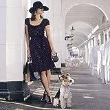 flexi . Roll-Leine Design, Gurt 5 m für Hunde bis Maximal 15 kg , S, blau - 5