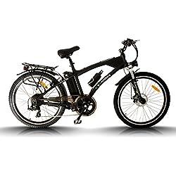 "Bicicleta eléctrica Egarbike MTB Lifepo4 36V 10ah 26"" MONTAÑA"